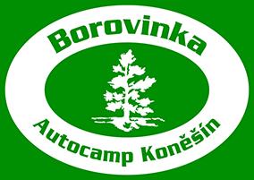 Camp Borovinka logo